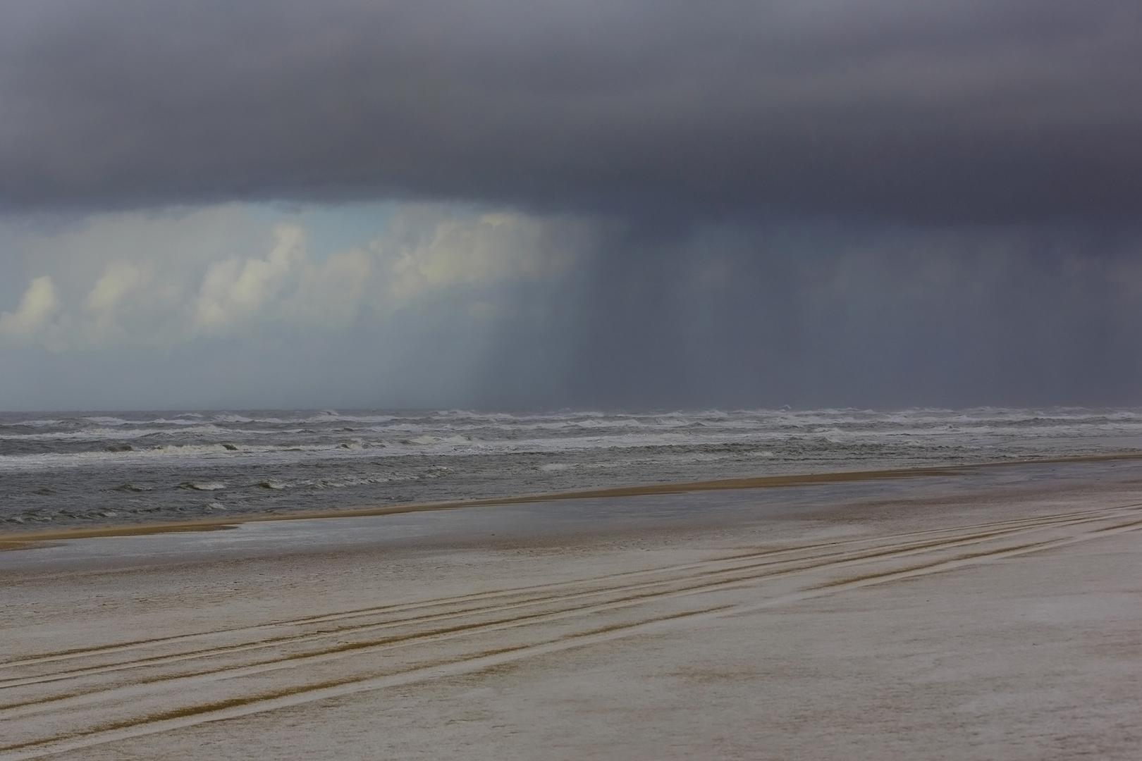 1884 Bui op het strand 2016-11-18 Bw-v 1620