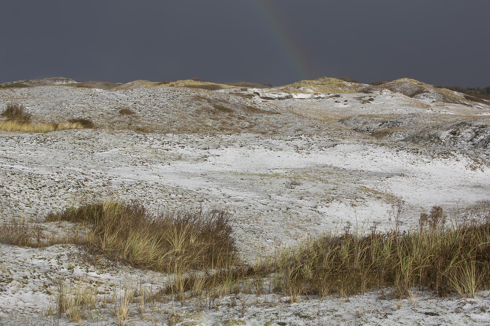 1868 Hagel in de duinen 2016-11-18 Bw-v 1620
