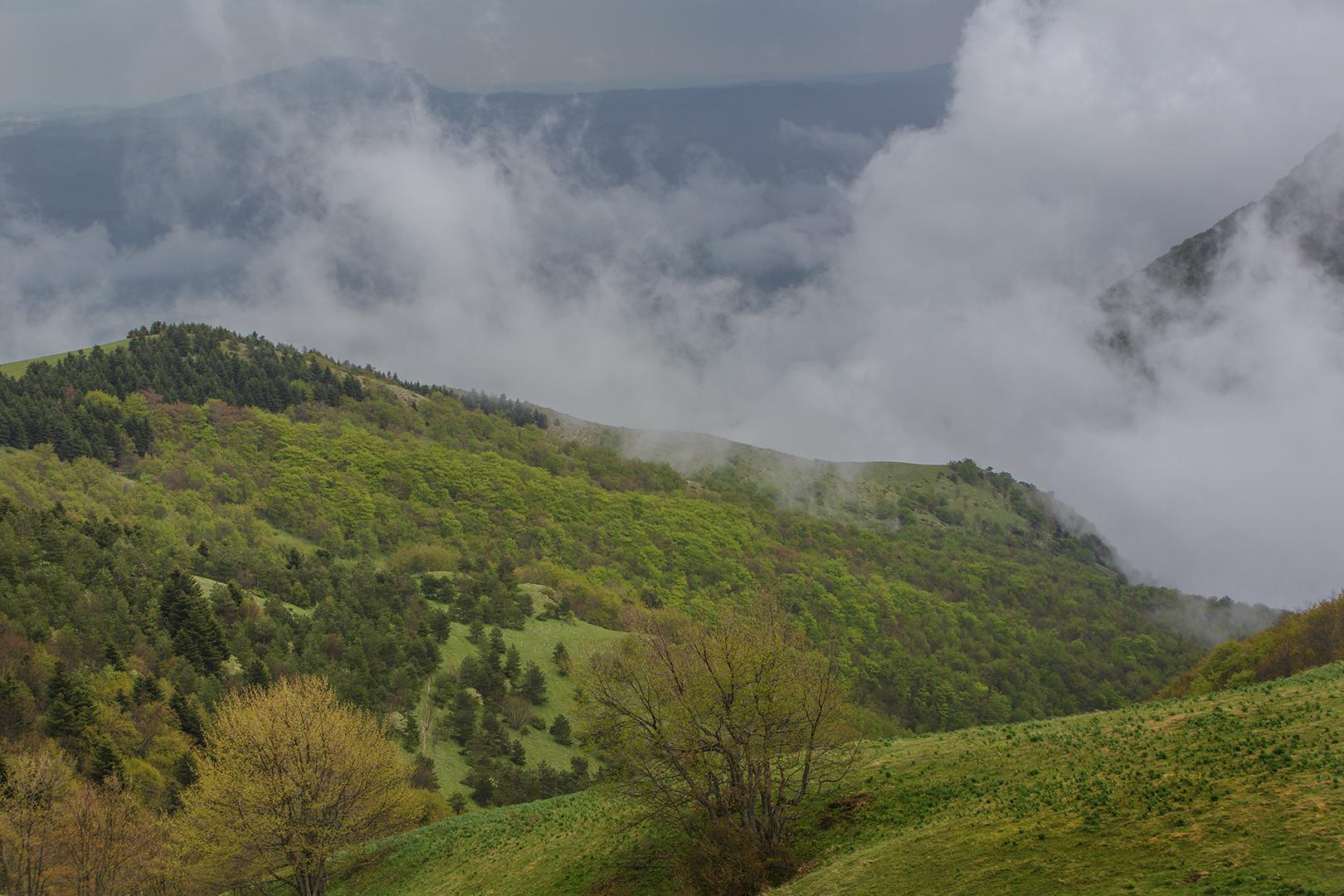 5296 Mt Sibilini 27-04-2017 B_V_1620_DDN