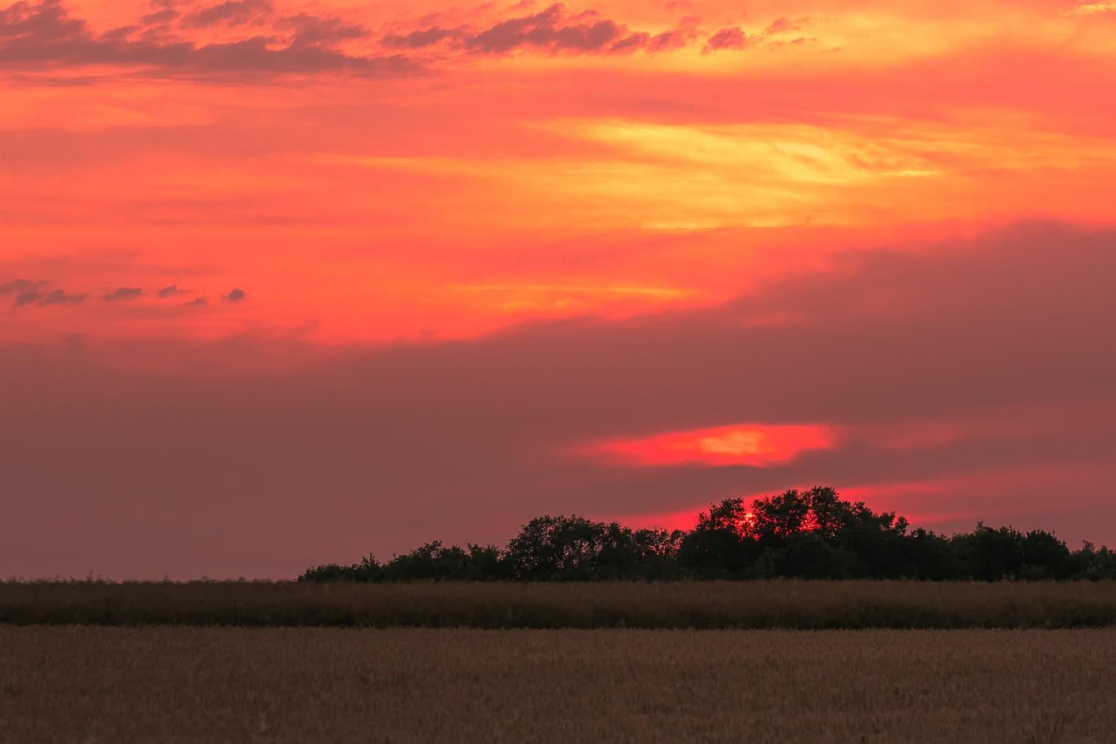 De zon gaat onder boven de graanvelden in de Brenne.
