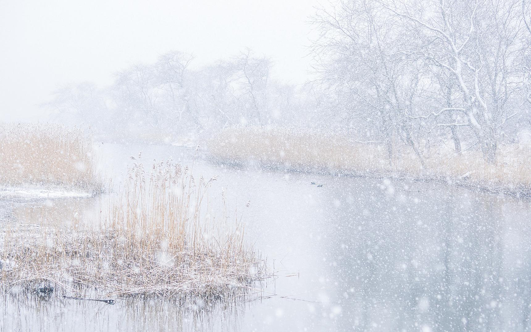 Winter Sneeuw DDN Loes Belovics
