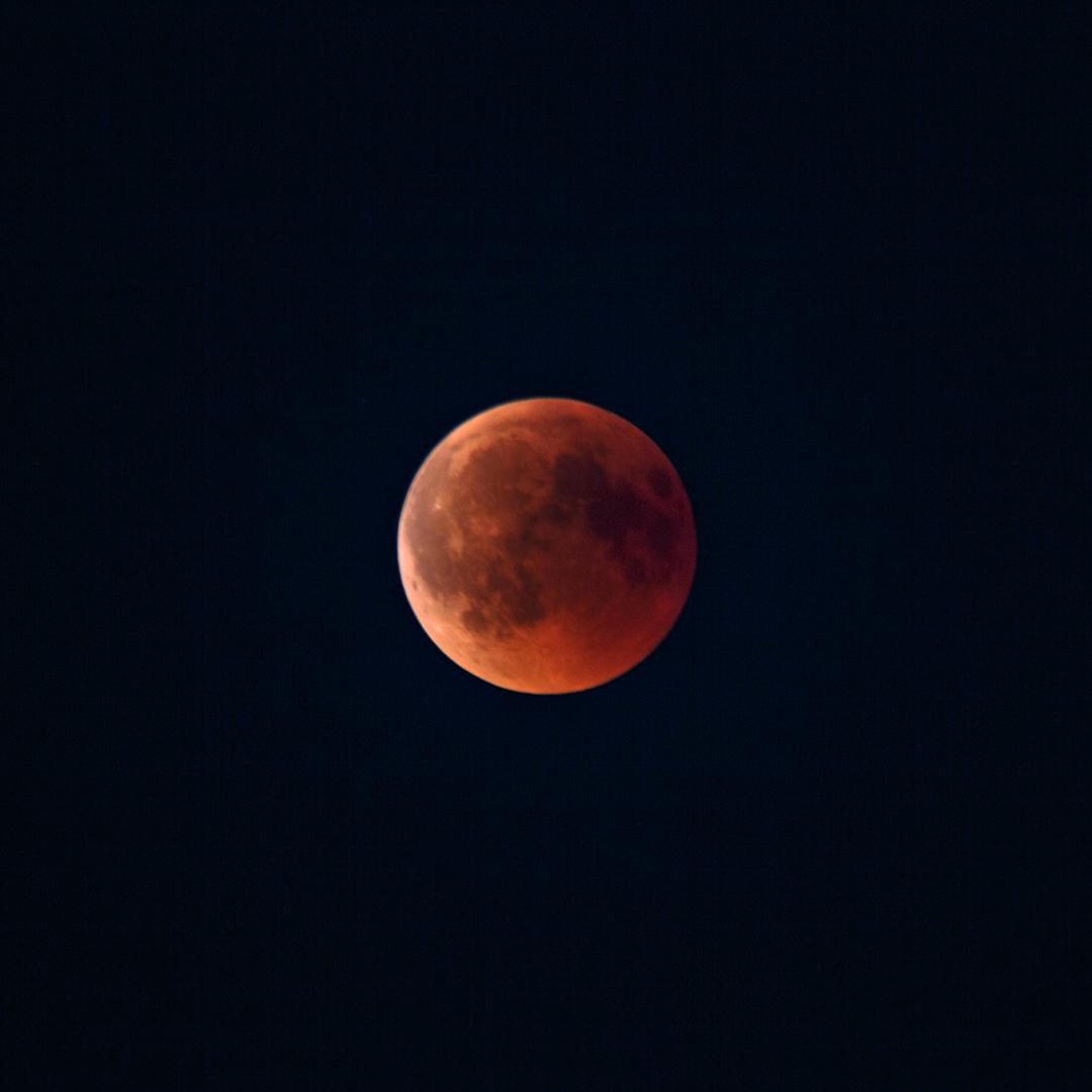 3890 Bloedmaan 27-07-2018 B_V_SH_1080
