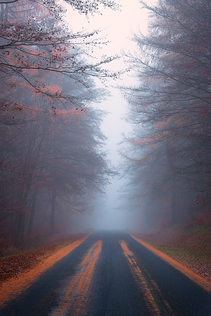 Road to the Unknown II
