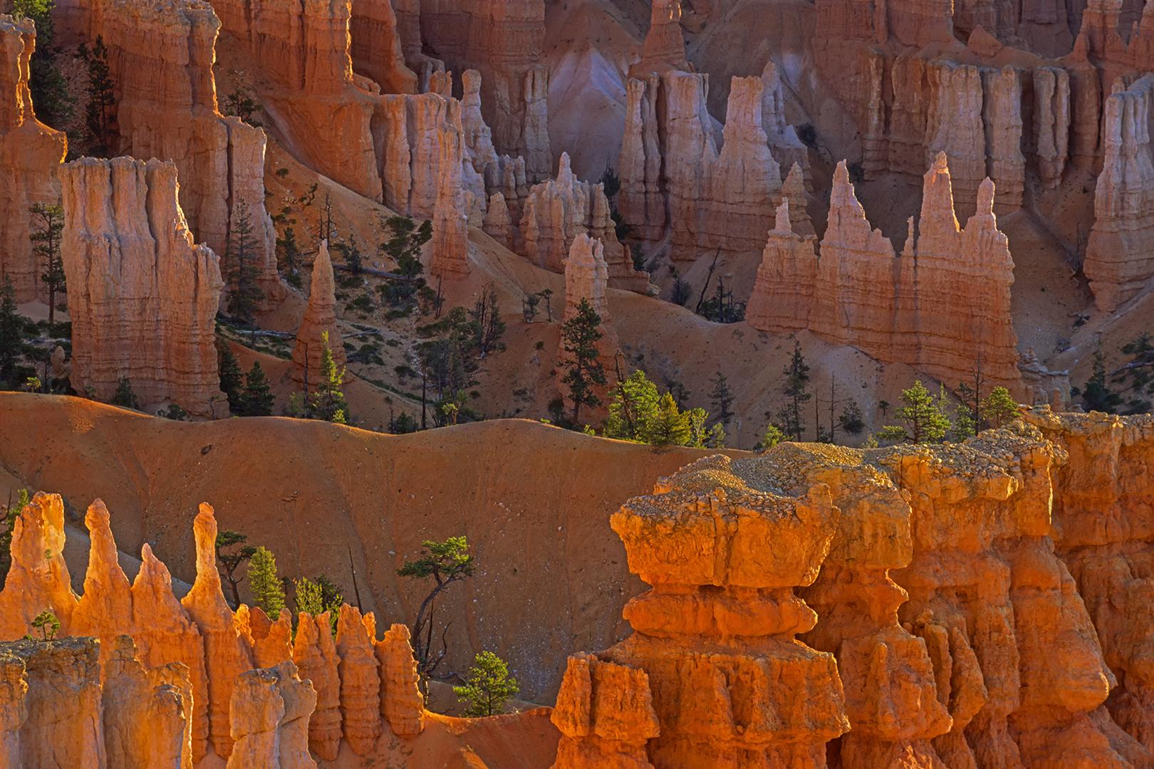 01_242-36 Bryce Canyon B_V_SH_O_1620