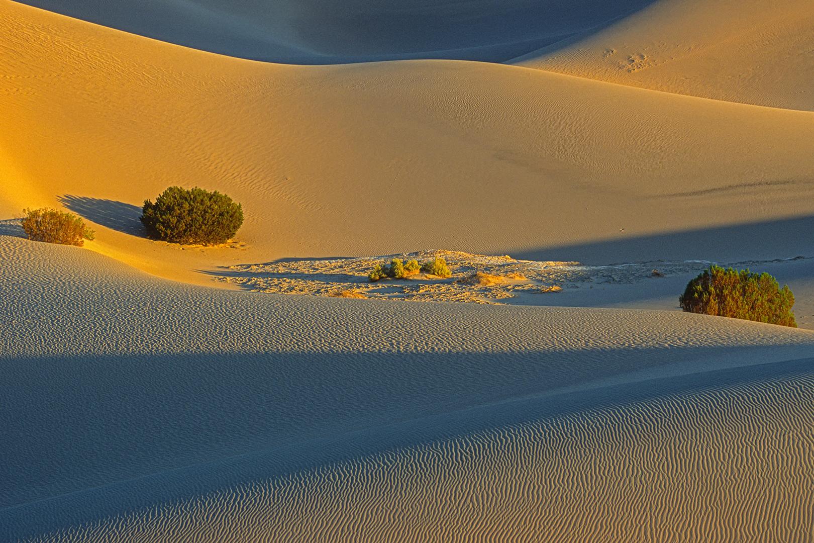 2001_229-30 Death Valley B_nv_O_1620