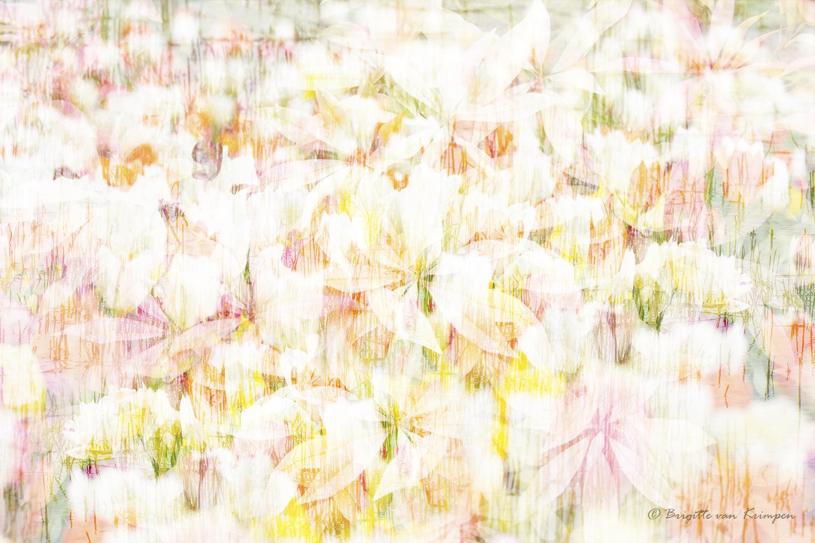 IMG_1313 Flower art DDN 1080PX