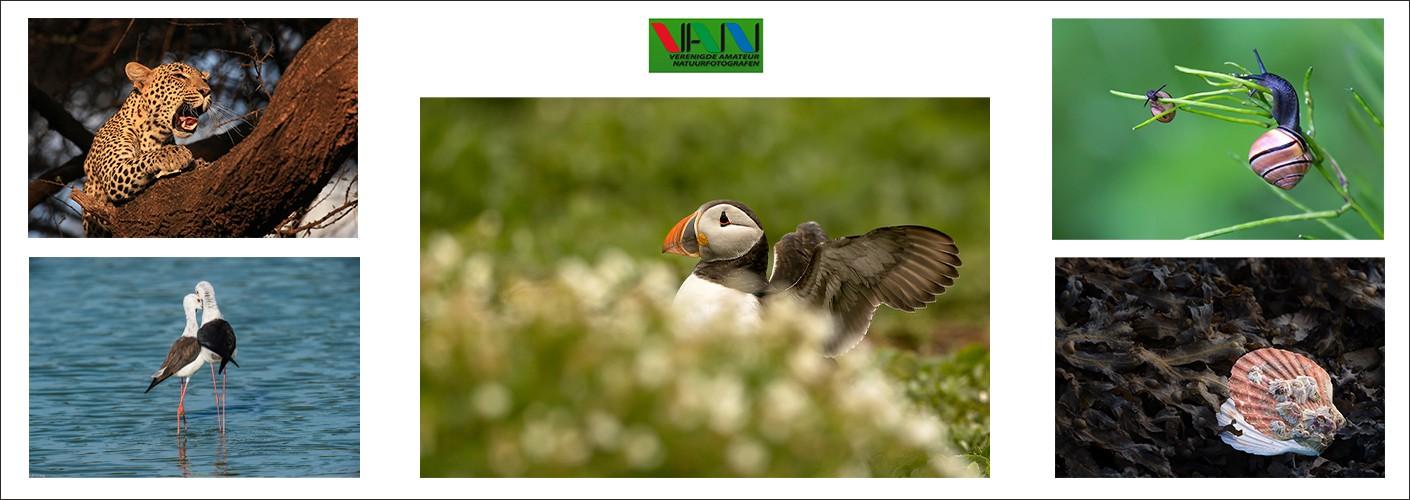 Verenigde Amateur Natuurfotografen