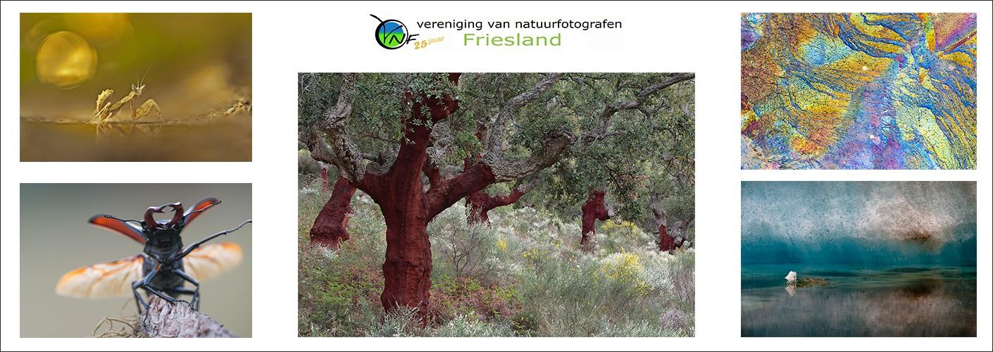 VNF Friesland