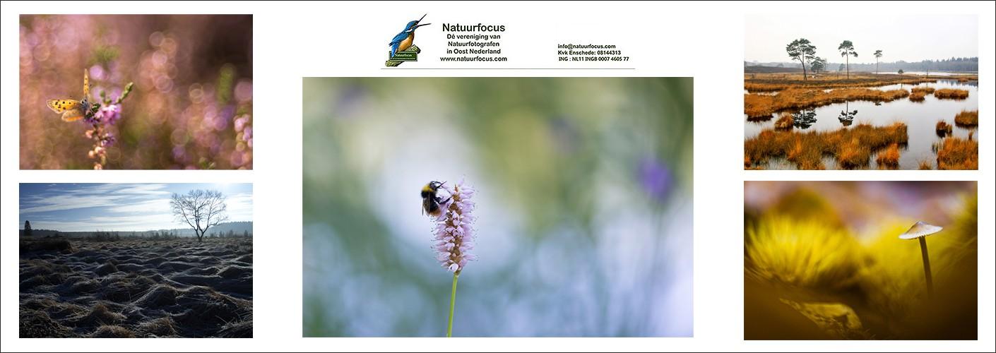 Natuurfocus
