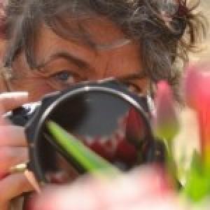 Profielfoto van Loes Belovics