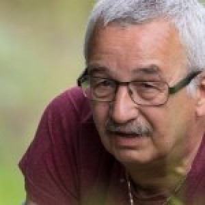 Profielfoto van Wilfried solarz