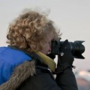 Profielfoto van Gerlofke