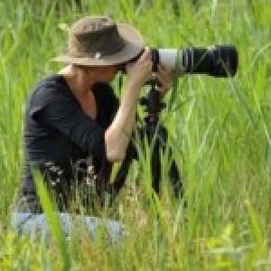 Profielfoto van LindaHazenberg