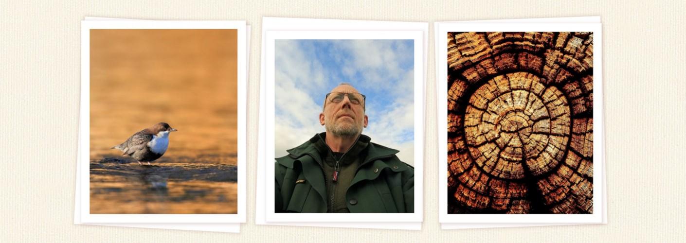 Portfolio Ronald Huijssen
