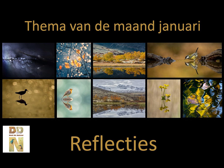 Reflecties