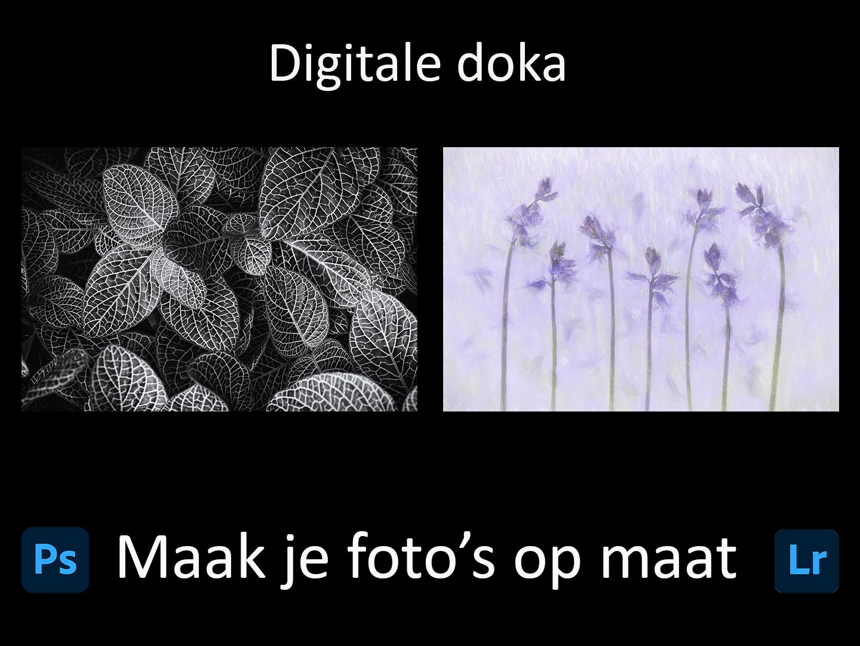 DDN Spotlight DD - maak je foto's op maat