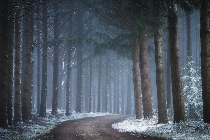 Calm snow