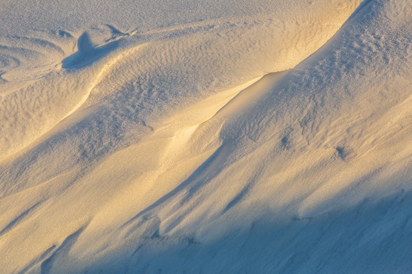 6165 Sneeuwduin 13-02-2021 B_nv_1620