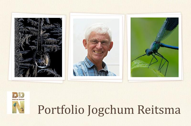 Portfolio Jogchum Reitsma