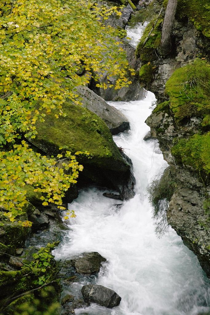 Snelstromend riviertje
