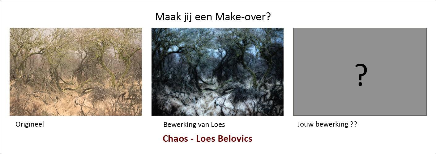 """""""Chaos""""- Maak jij een Make-over?"""