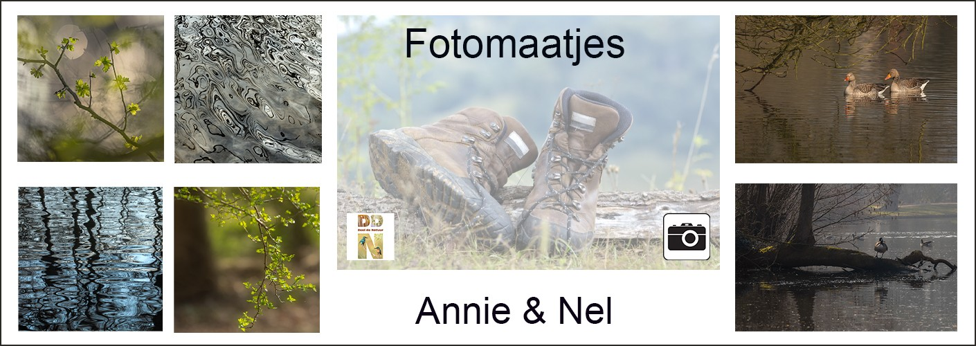 Fotomaatjes Annie & Nel