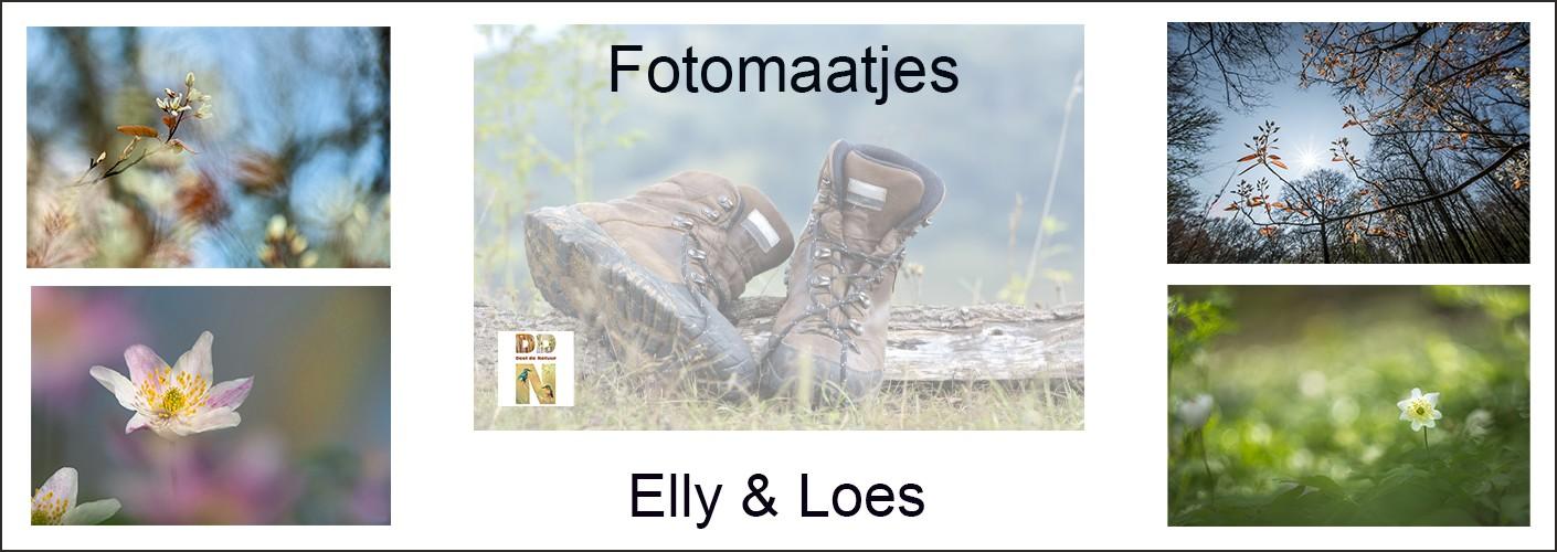 Fotomaatjes Elly & Loes