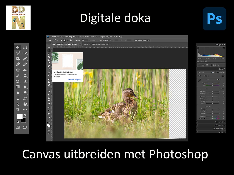 DD 010 Canvas uitbreiden spotlight