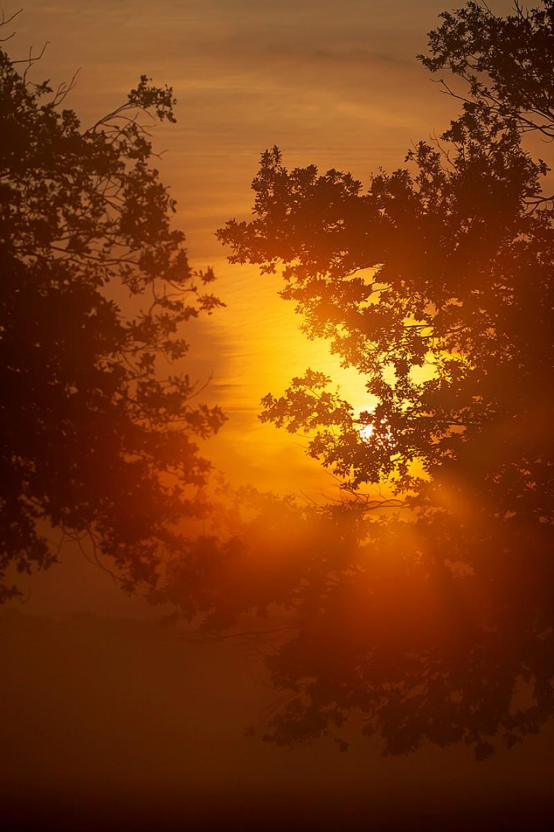 De sfeer in de vroege ochtend