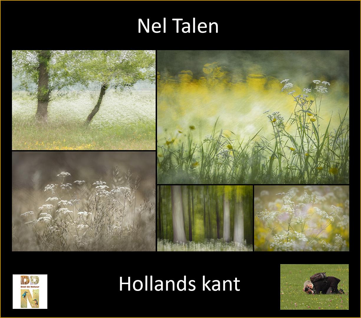 Column van Nel Talen - Spotlight versie C