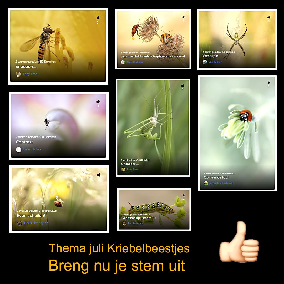 Maandthema Kriebelbeestjes - stemmen