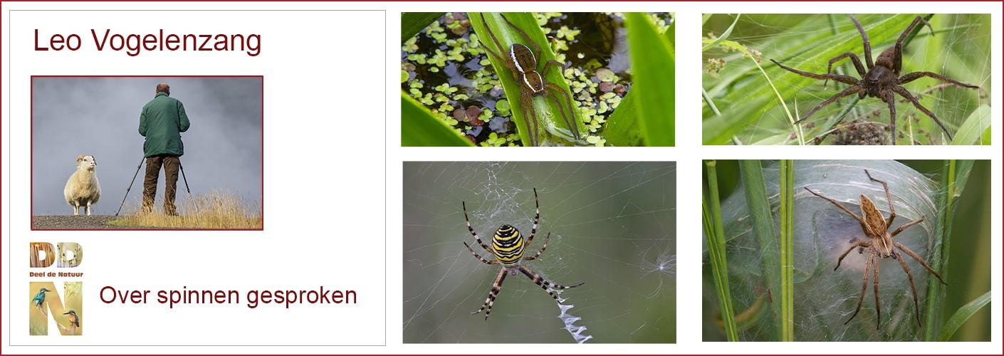 Over spinnen gesproken