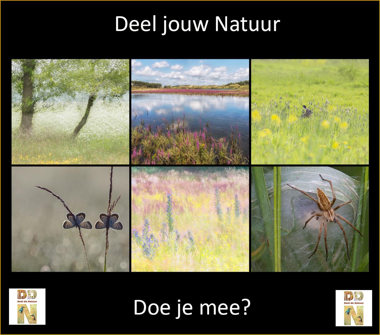 Deel jouw Natuur
