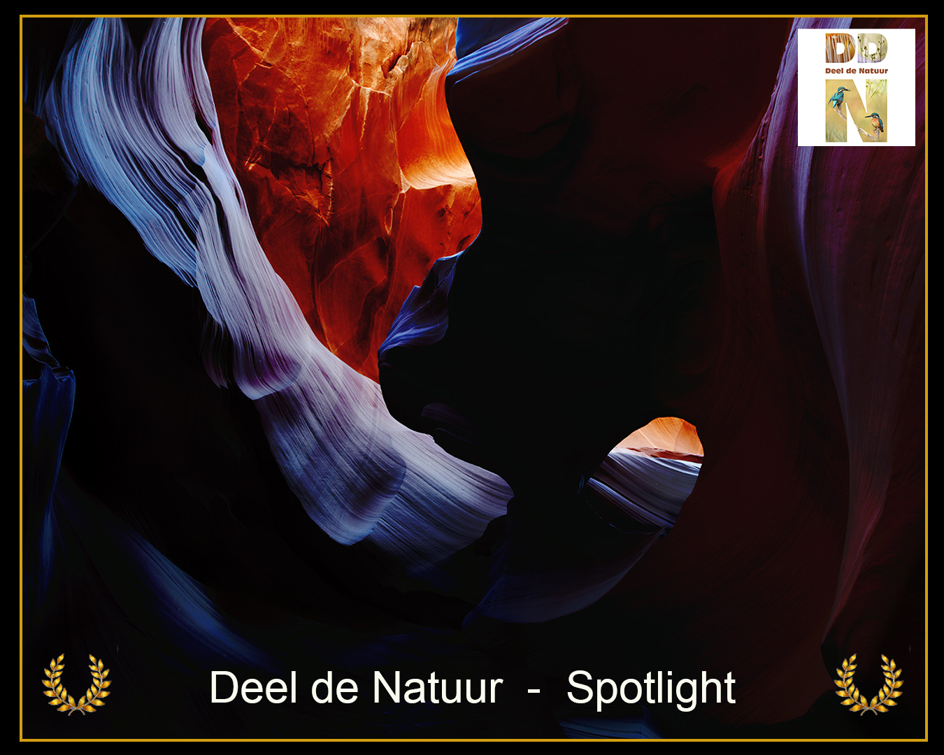 DDN Spotlight FB 18-08-2021