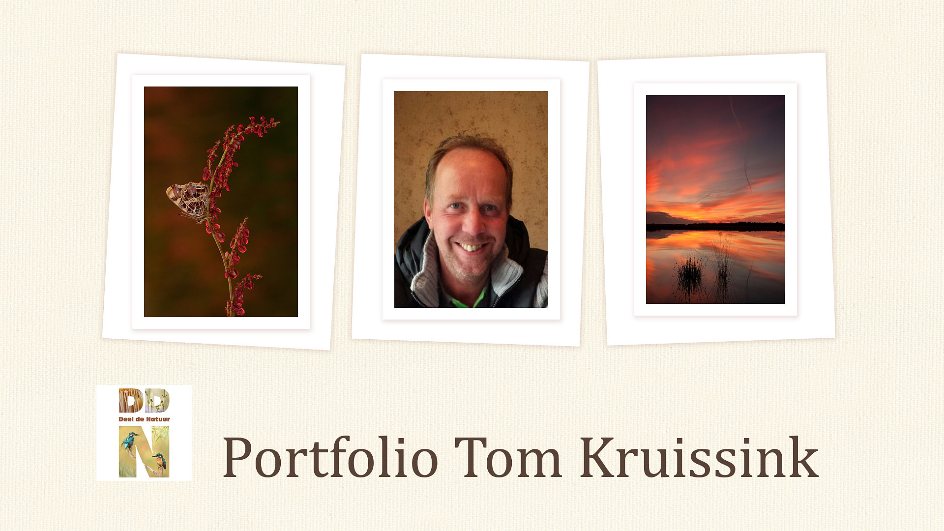 Portfolio Tom Kruissink Spotlight