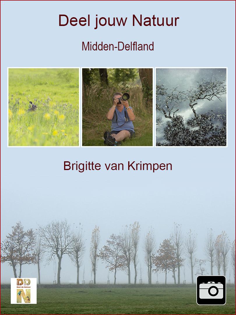 Brigitte van Krimpen - Midden-Delfland  Spotlight v2