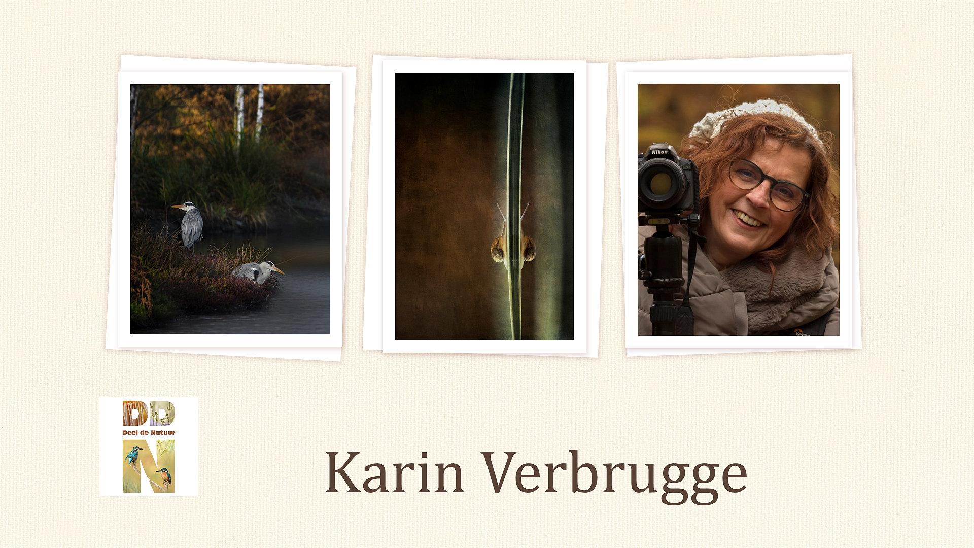 Portfolio Karin Verbrugge