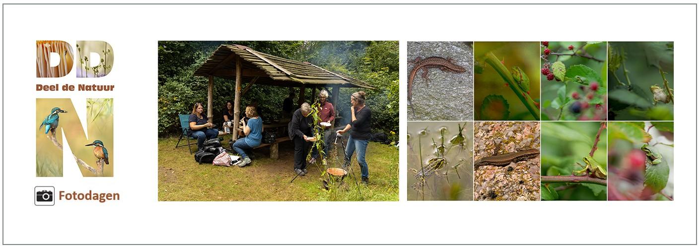 Verslag DDN fotodag Boomkikkers en meer! 13-09