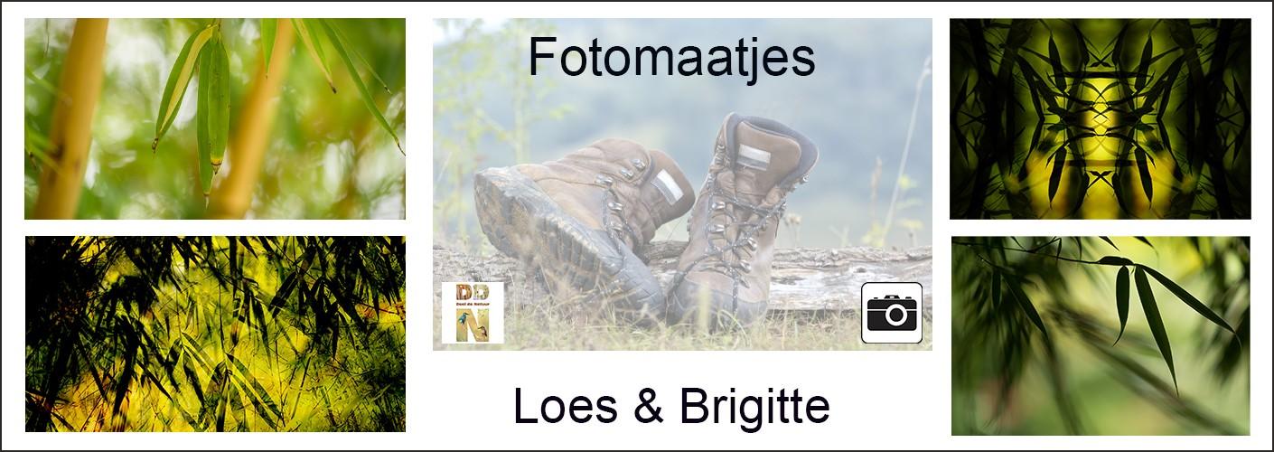 Fotomaatjes Loes & Brigitte