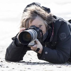 Profielfoto van Marjo Snellenburg