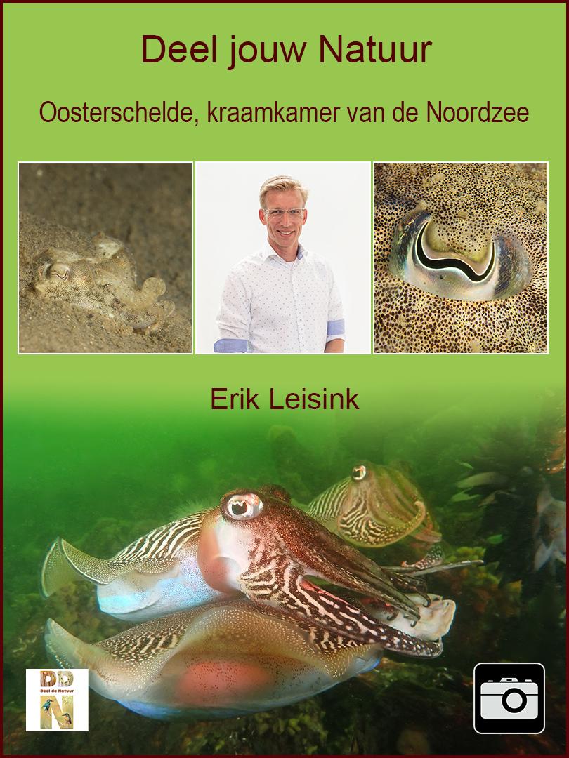 Erik Leisink - Oosterschelde spotlight